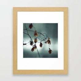 Frost & beauty III Framed Art Print