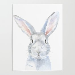 Gray Bunny Rabbit Watercolor Painting Poster