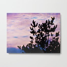 Pine Trees and Surf Clouds Metal Print