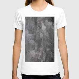 Dreamy Canyon Ice Crystals T-shirt