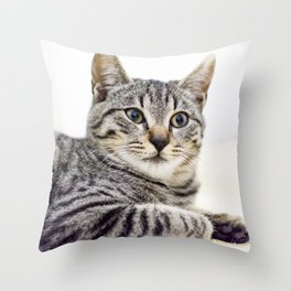 Tiger, Portrait n. 1 Throw Pillow