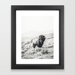 Nomad Buffalo Framed Art Print