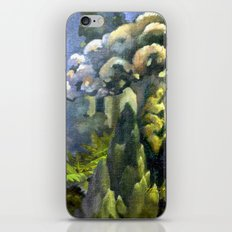 Tarairi Forest Morning iPhone & iPod Skin