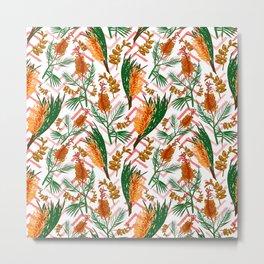 Beautiful Australian Native Floral Illustrations - Banksia Flowers Metal Print