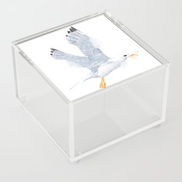 Don't feed the seagulls Acrylic Box
