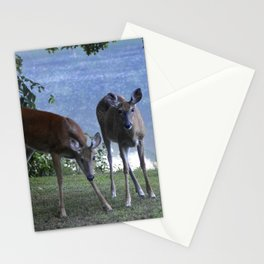 Grazing Deer Stationery Cards