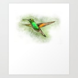 Colorful Hummingbird Illustration Bird Lover Biologist Art Print