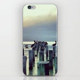 voler. iPhone Skin