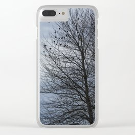 Birds Settling Into a Tree Late on a Winter's Afternoon Clear iPhone Case