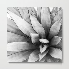 Botanical Succulents // Black and White Desert Cactus High Quality Photograph Metal Print