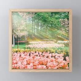 Fairytales Spring Garden 11 Framed Mini Art Print