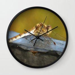 Resting Dragonfly Wall Clock