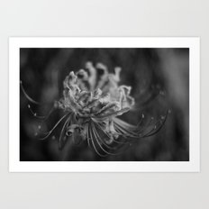 daylight fading Art Print