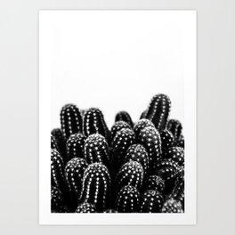 Cactus NATURE XII Art Print