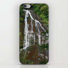 Mingo Falls iPhone & iPod Skin