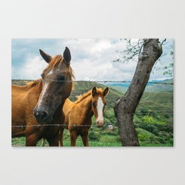 Mother and Daughter (Colombia) Canvas Print