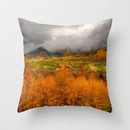 Colorado Fall Colors Throw Pillow