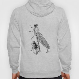 Dragonfly Molting Hoody