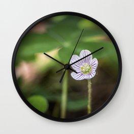 Wood Sorrel Flower Wall Clock