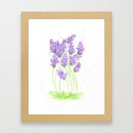 Watercolor Flowers, Lavenders, Purple flowers Framed Art Print