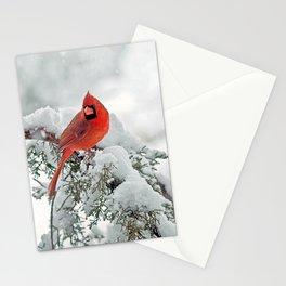 Cardinal on a Snowy Branch Stationery Cards