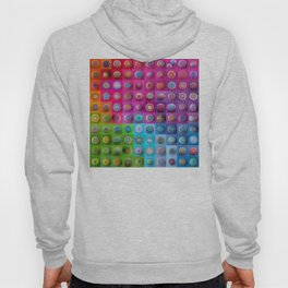 Colourful collection of hand painted mandala stones Hoody
