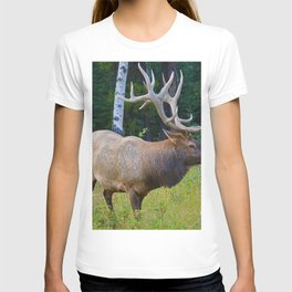 Bull Elk shows off his rack in Jasper National Park T-shirt