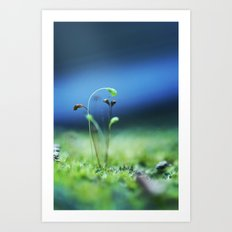 Little World Art Print