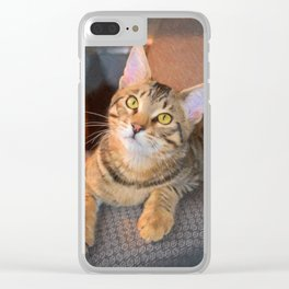Cute Bengal Kitty Clear iPhone Case