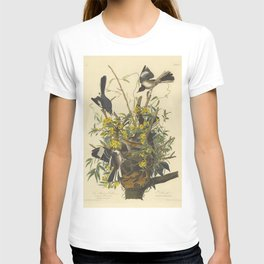 The MOCKING BIRD and RATTLESNAKE Audubon T-shirt