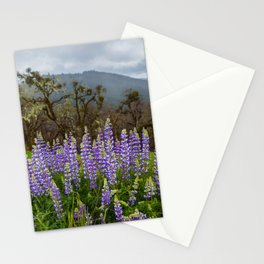 Lupines In The Hills Stationery Cards