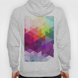 Pixel Prism Hoody
