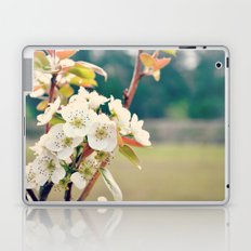 Pear Blossoms Laptop & iPad Skin