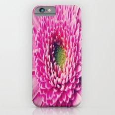 Gerbera Macro Slim Case iPhone 6s