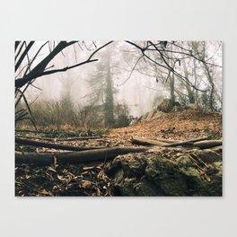 Mount Sutro Canvas Print