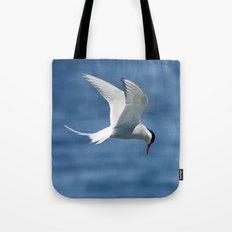 Arctic Tern Tote Bag