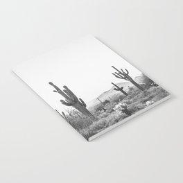 DESERT / Scottsdale, Arizona Notebook