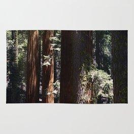 Sequoia Rug