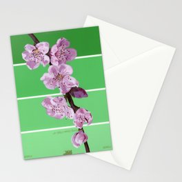 Cherry Blossoms on Greens Stationery Cards
