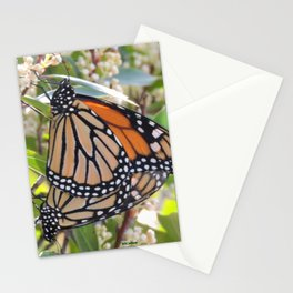 Love in the Air - Monarch Style Stationery Cards