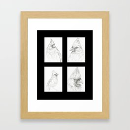 Cardinals 2 Framed Art Print