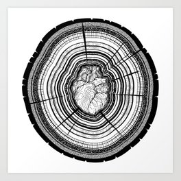 Heartwood Art Print