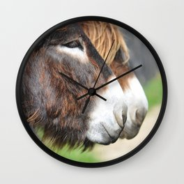 burros Wall Clock