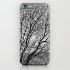 Illusion of Winter iPhone 6s Slim Case