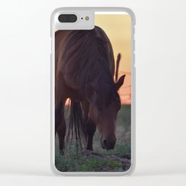 Wild Mustang at the end of the day Clear iPhone Case