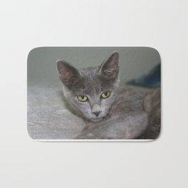 Beautiful Portrait of A Grey Russian Cross Tabby Cat  Bath Mat