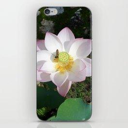 Lotus 1 iPhone Skin
