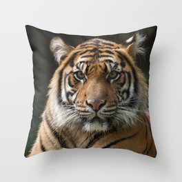 Look into my eyes by Teresa Thompson Throw Pillow