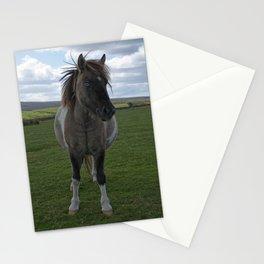 Blue Eyed Dartmoor Pony Stationery Cards