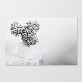 Pale Blue Hydrangea Canvas Print